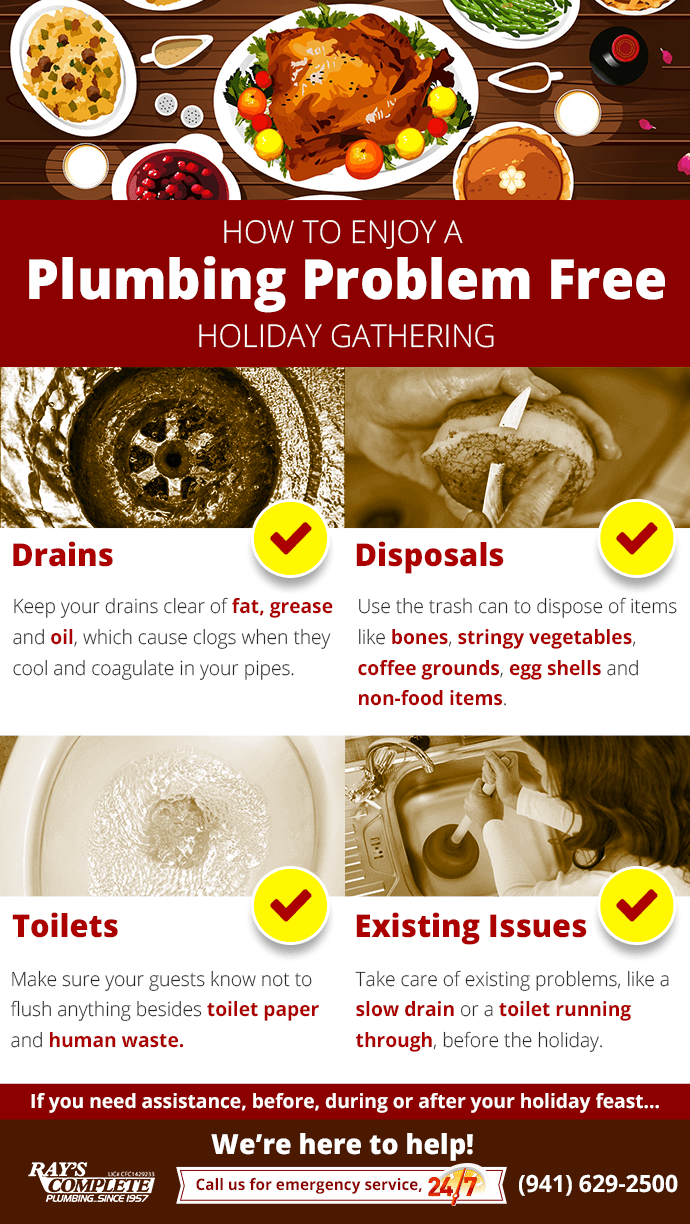 Infographic Describing how to enjoy a plumbing problem free holiday gathering